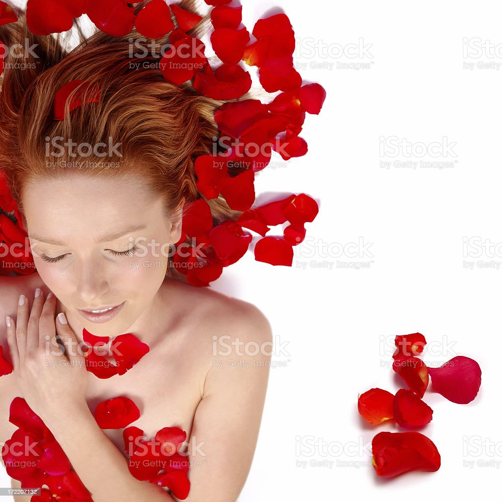 In rose's petals 1 royalty-free stock photo