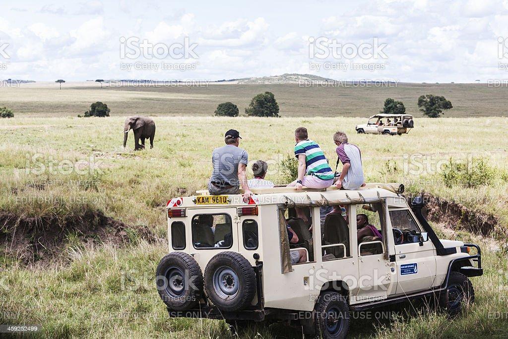 in safari jeep watching elephant. Masai Mara, Kenya.Group of people royalty-free stock photo