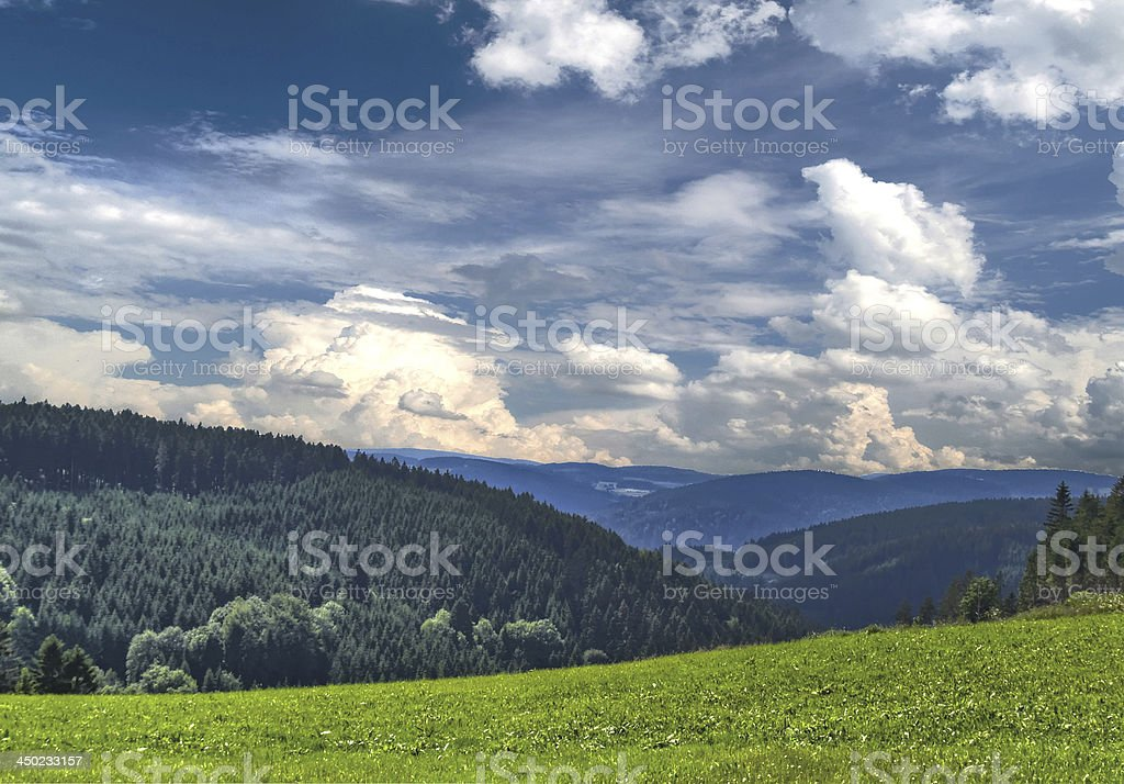 in the Black Forest stock photo