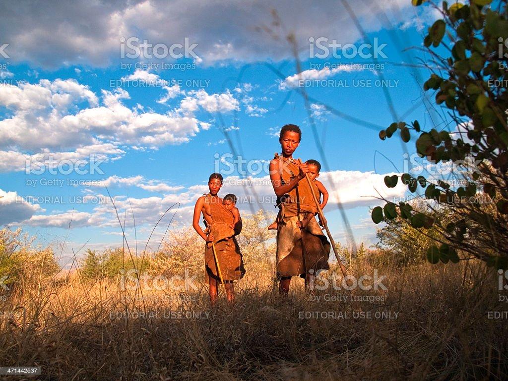 In the bush stock photo