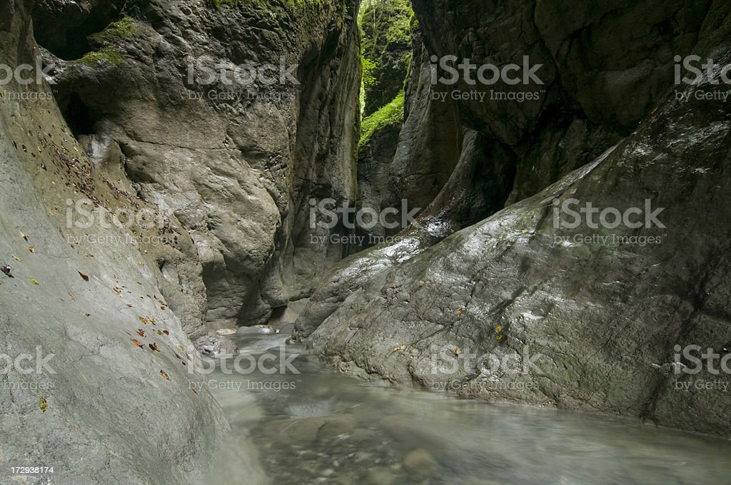 in the canyon royalty-free stock photo