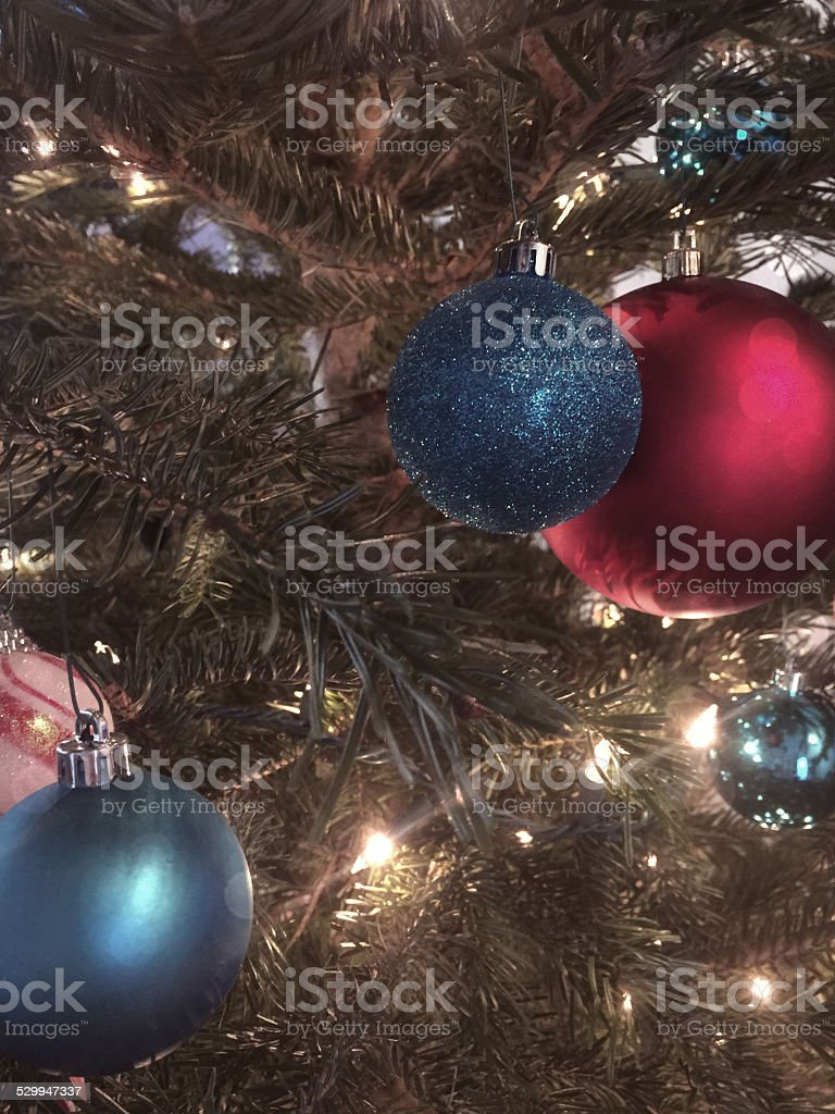 In the Christmas Tree stock photo