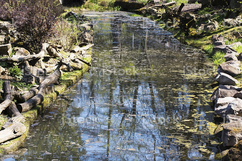 In the creek is mirrored trees and blue sky stock photo