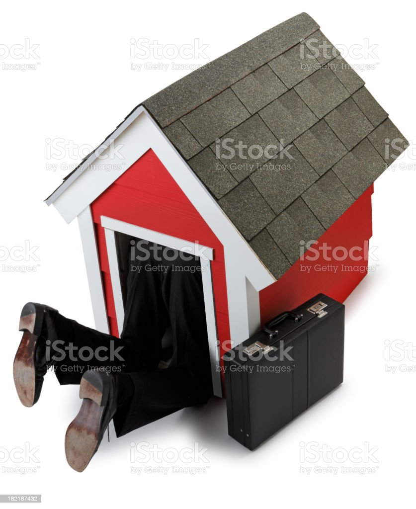 In the Dog House royalty-free stock photo