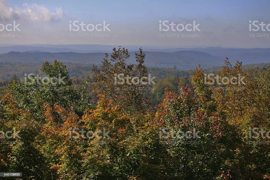 In The Fall. stock photo