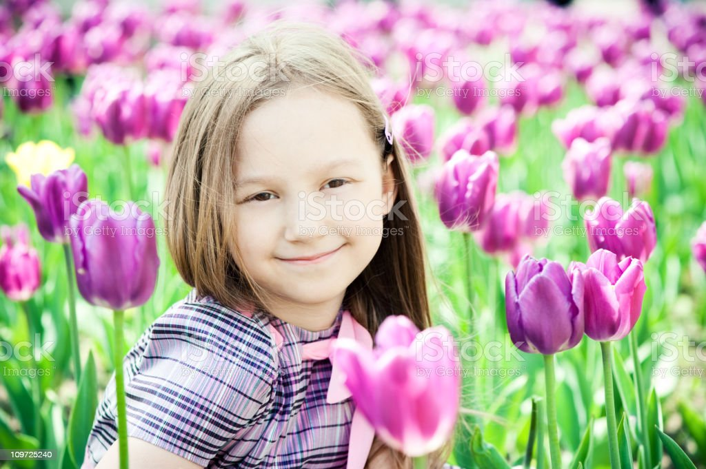 In the field of tulips royalty-free stock photo