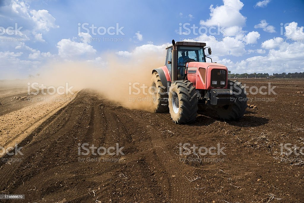 In the Field royalty-free stock photo