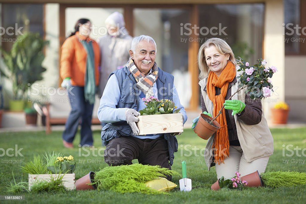 In the garden. royalty-free stock photo