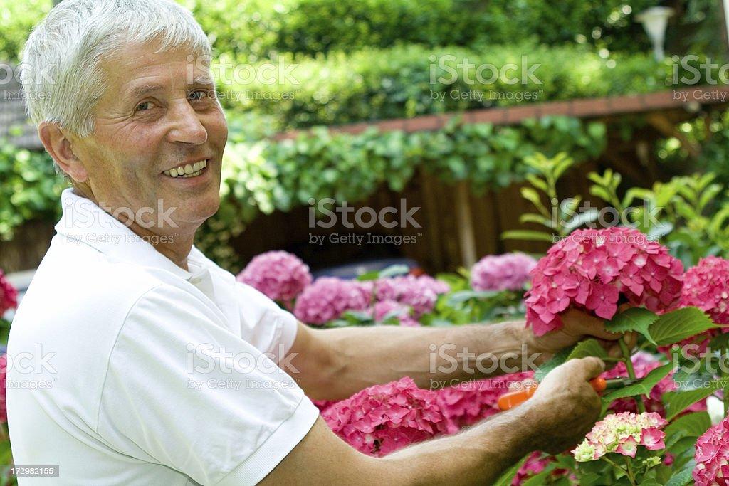 In the garden stock photo