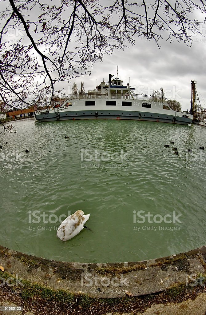 In the harbour royalty-free stock photo