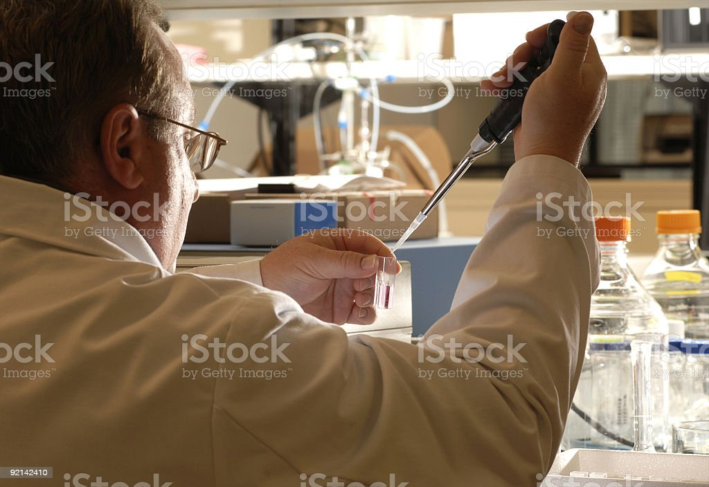 in the lab royalty-free stock photo