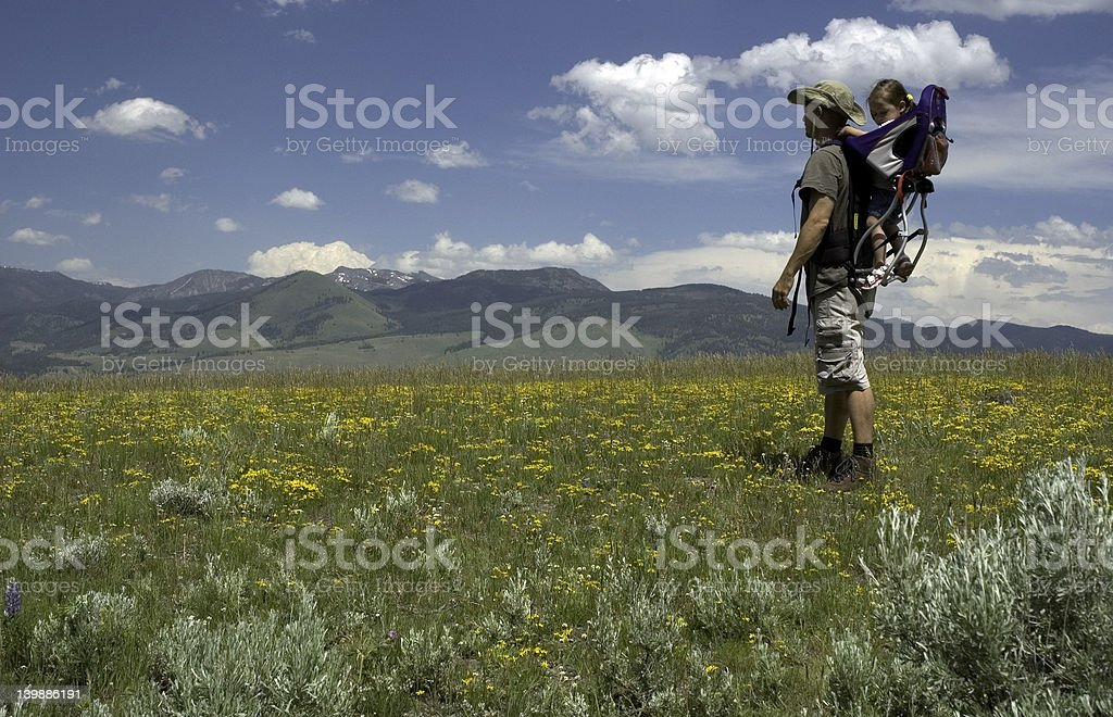 In the Meadow royalty-free stock photo