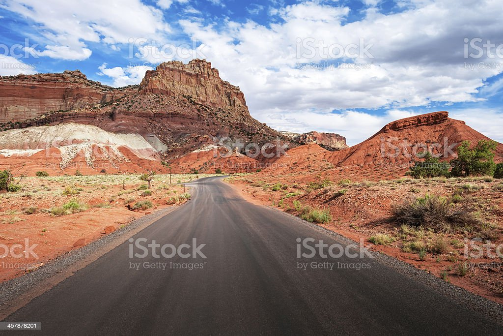 In the Middle of  Road royalty-free stock photo