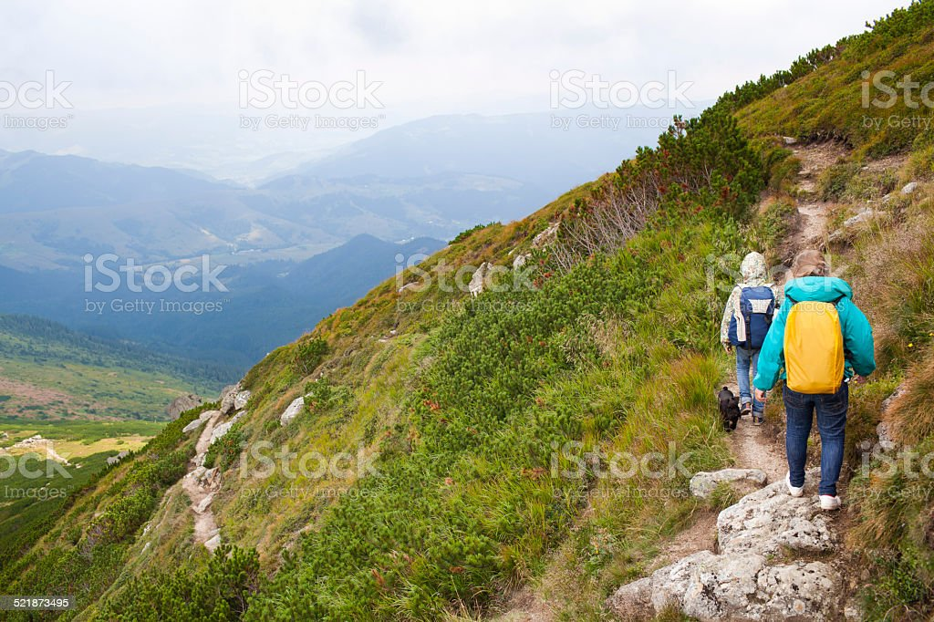 In the mountains stock photo