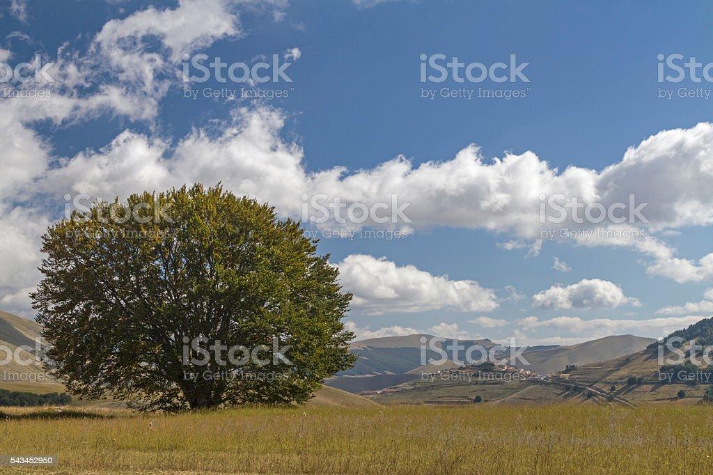 in the mountains Sibellini stock photo