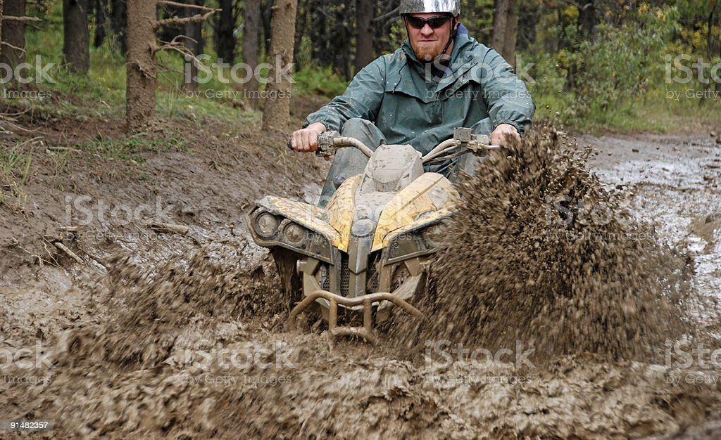 In the mud royalty-free stock photo
