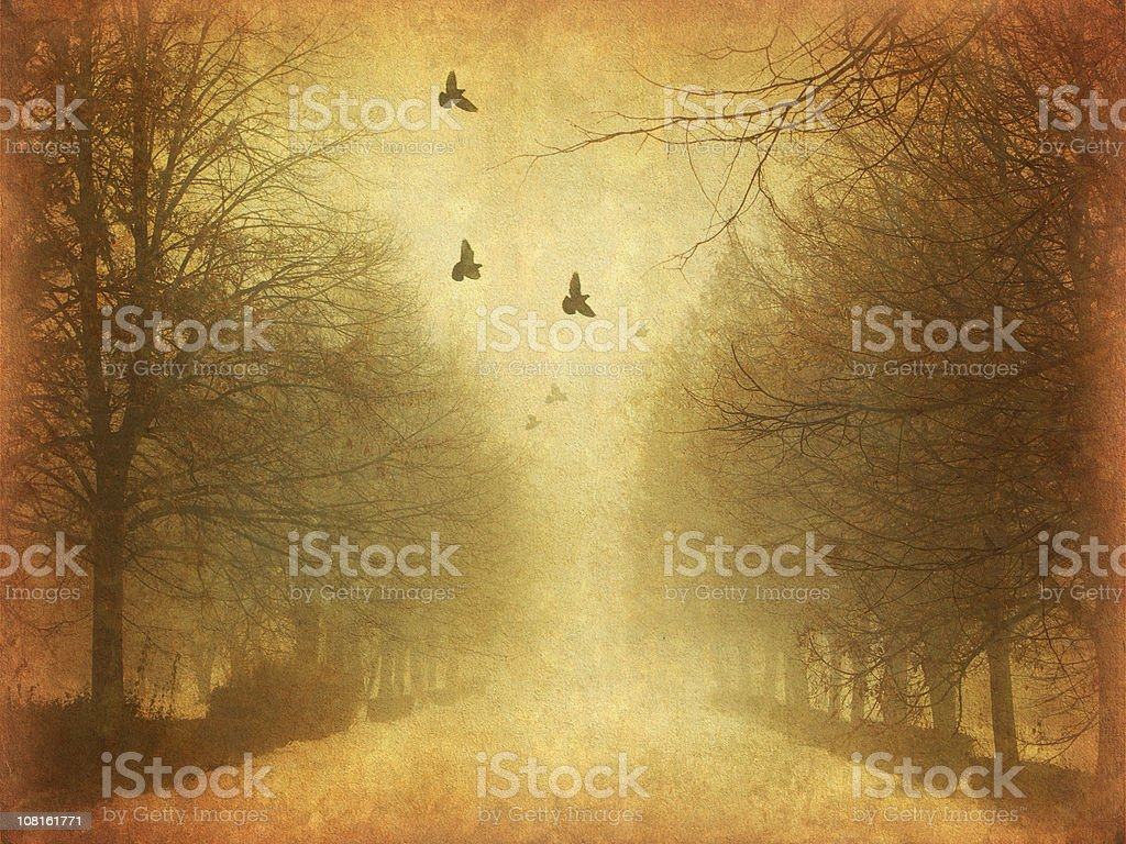 in the park - old photo royalty-free stock photo