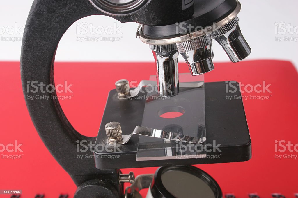 In the red under microscope royalty-free stock photo