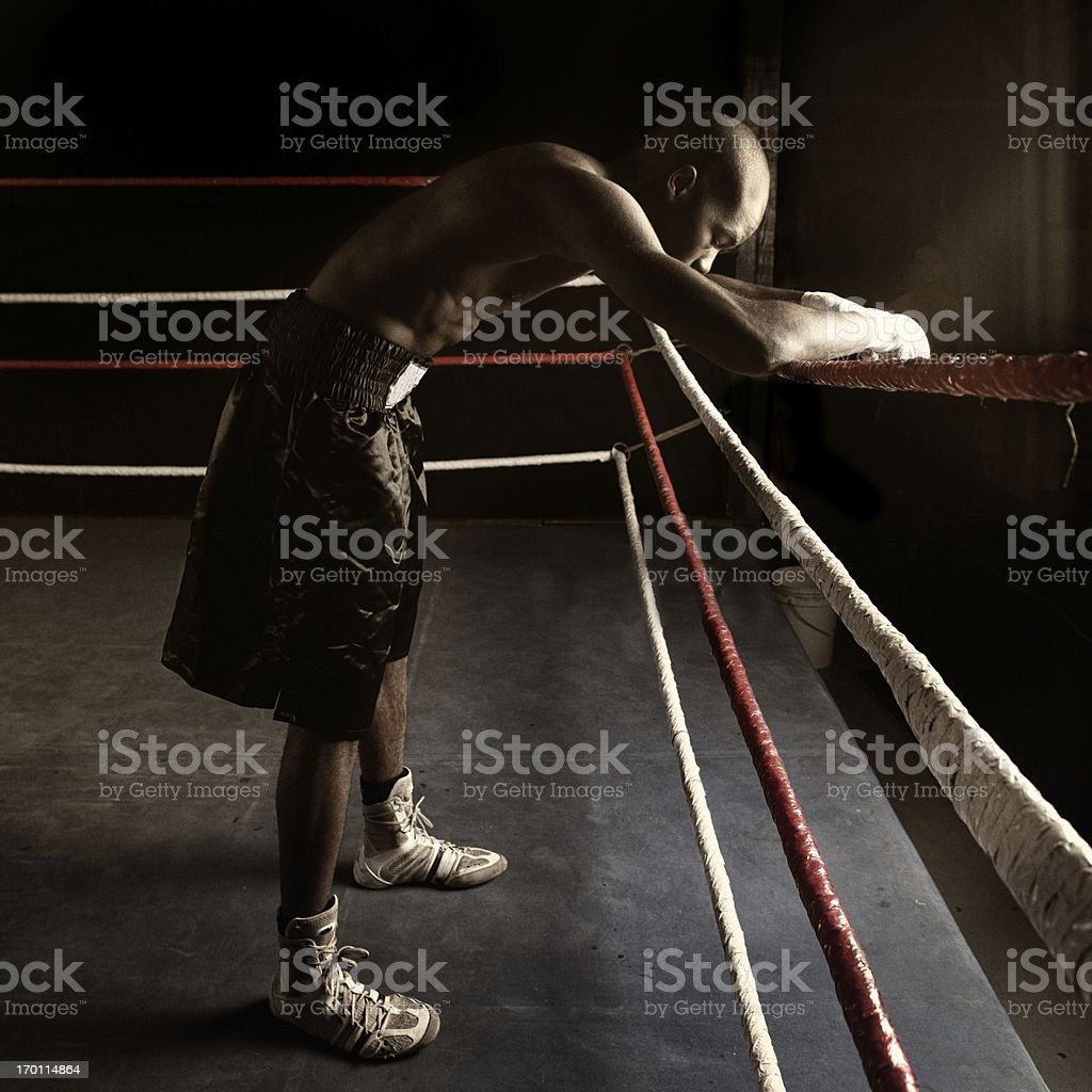in the ring royalty-free stock photo