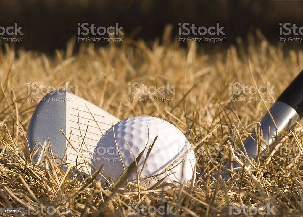 In the rough royalty-free stock photo