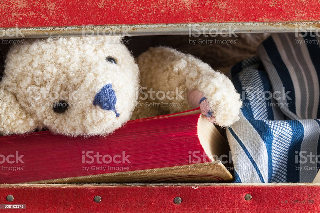 In the Suitcase stock photo