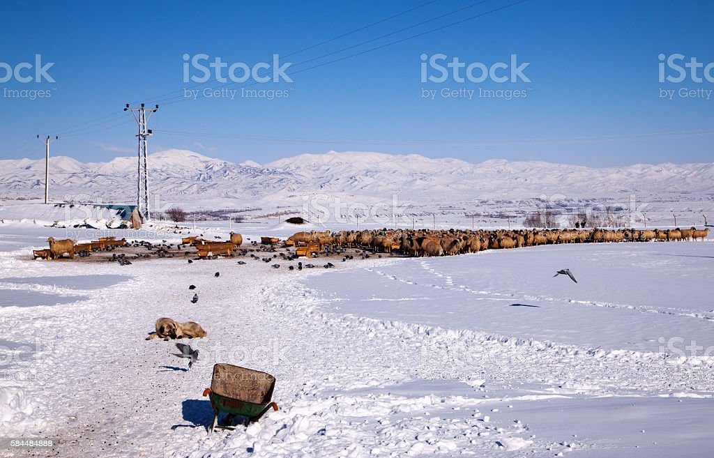 In the winter months the village life stock photo
