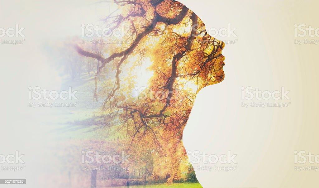 In touch with nature royalty-free stock photo