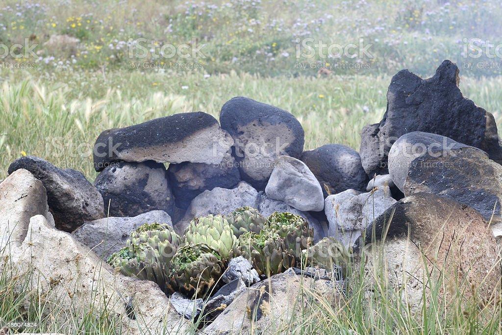 BBQ in wildlife artichokes royalty-free stock photo