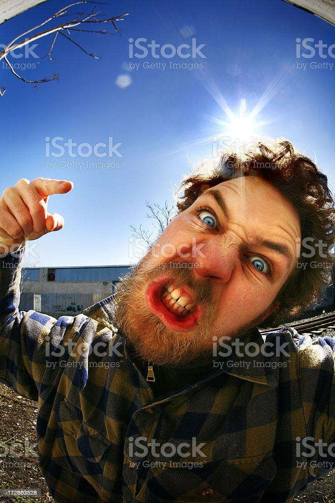 In Your Face royalty-free stock photo