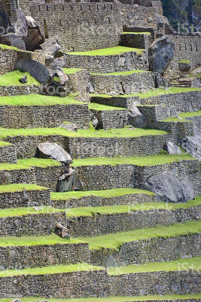 Inca Fields of Machu Picchu royalty-free stock photo