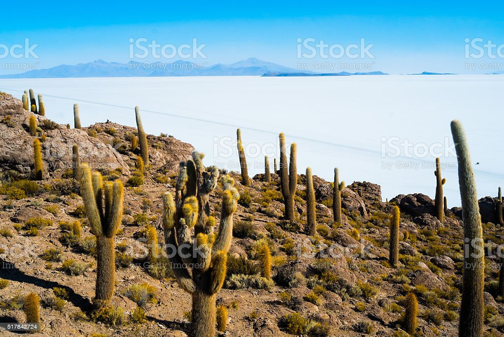 Isla Inca Wasi stock photo