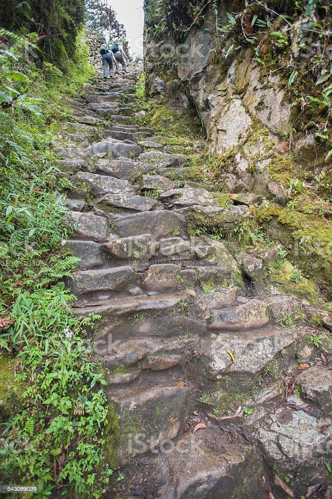 Inca Trail stone steps to Machu Picchu stock photo