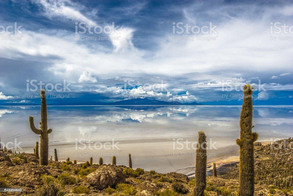 Incahuasi island, Salar de Uyuni, Bolivia stock photo