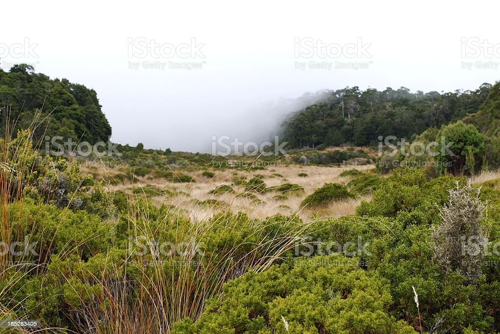 Incoming Mist over the Abel Tasman National Park, NZ royalty-free stock photo