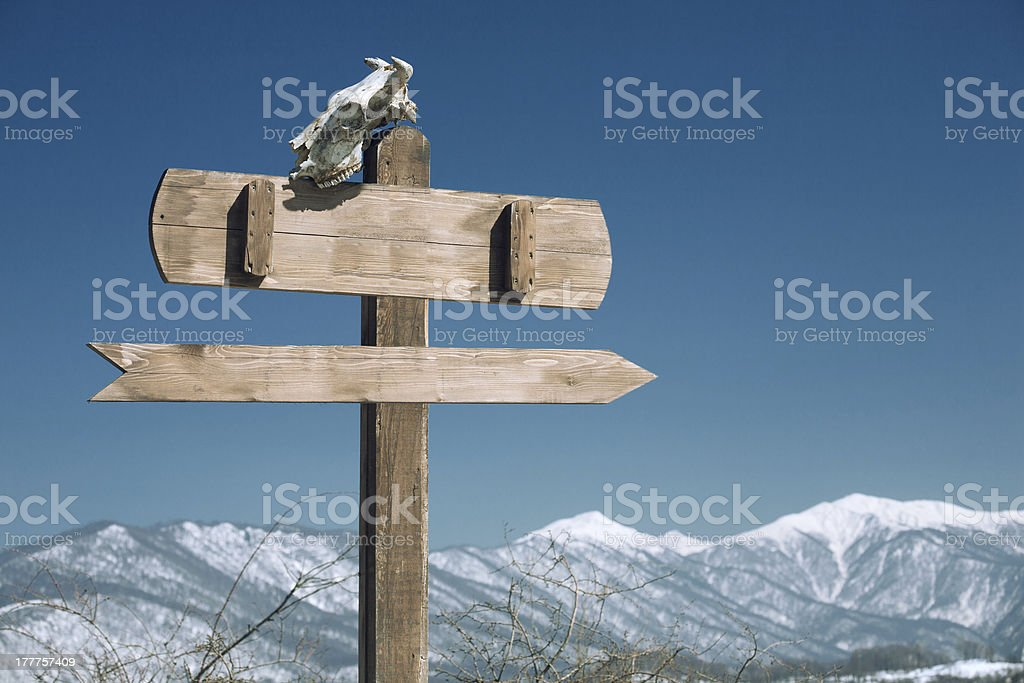 index with skull royalty-free stock photo