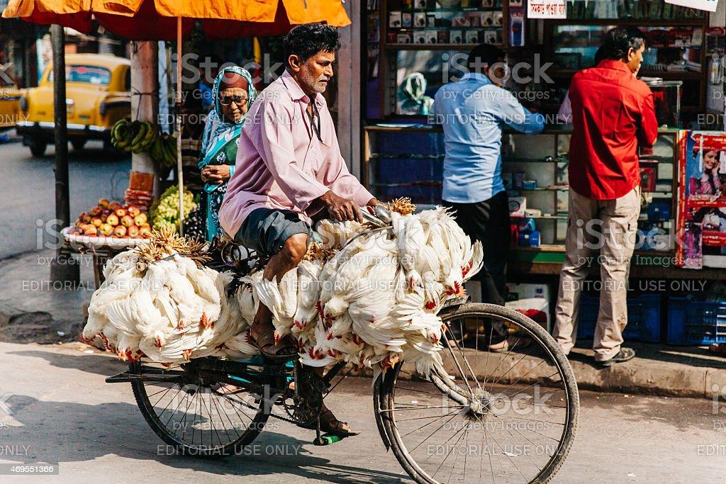 India: Kolkata Poultry Bicycle stock photo
