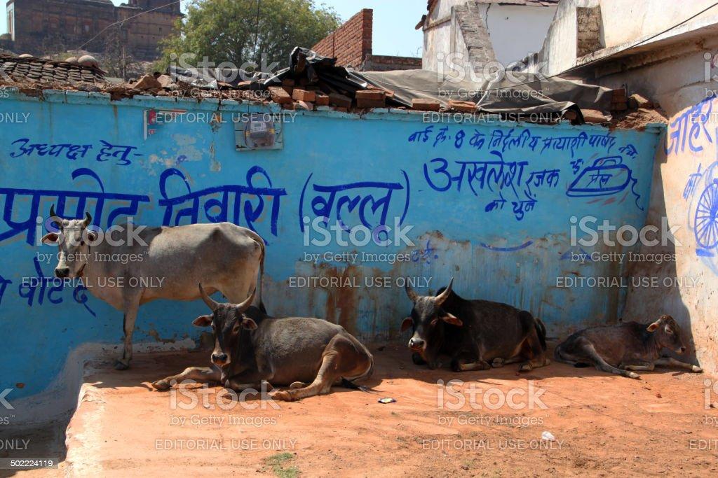 India: Town of Orchha stock photo