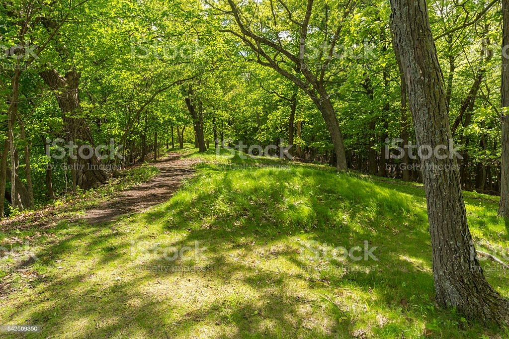 Indian Burial Mounds stock photo