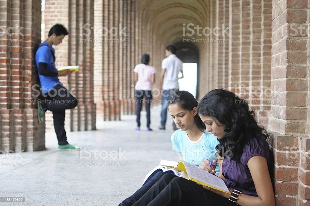 Indian College students preparing for examination. stock photo