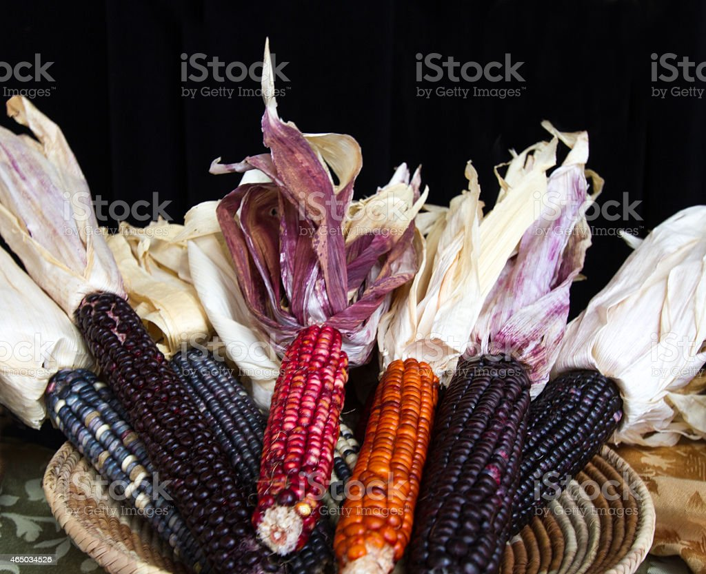 Indian Corn in Woven Basket stock photo
