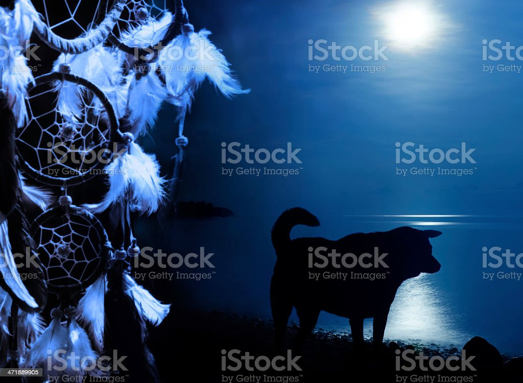 Indian culture - dreamcatcher with wolf royalty-free stock photo