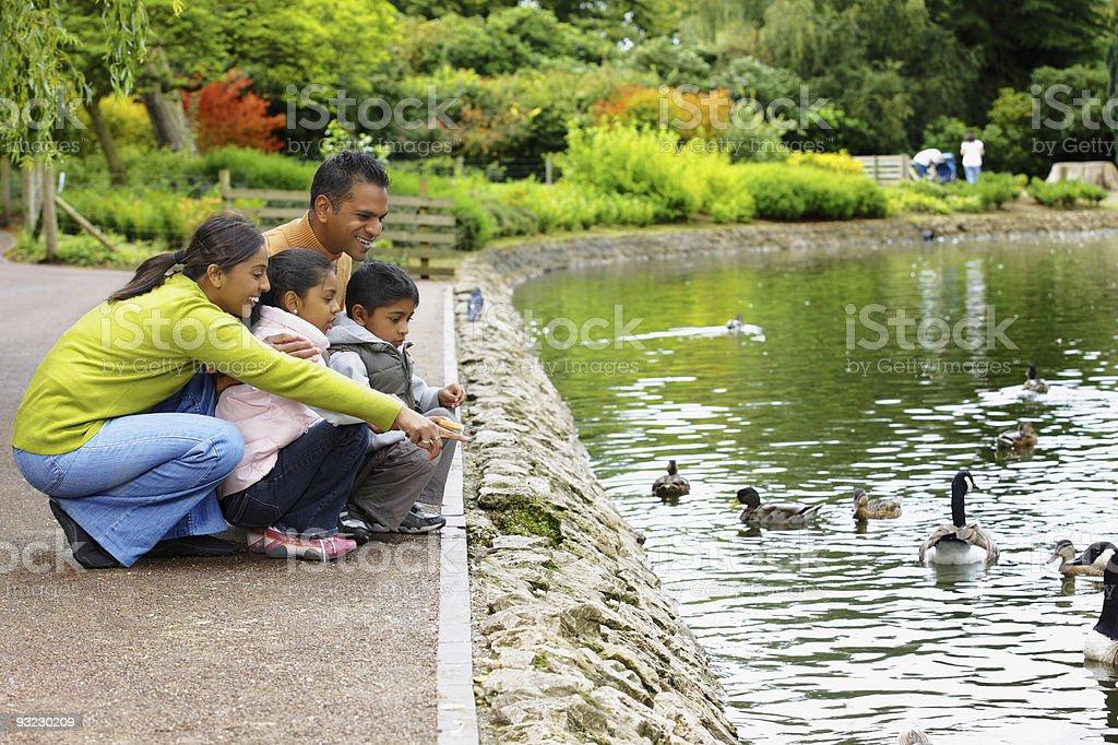 Indian Family outdoors feeding ducks on a park lake stock photo
