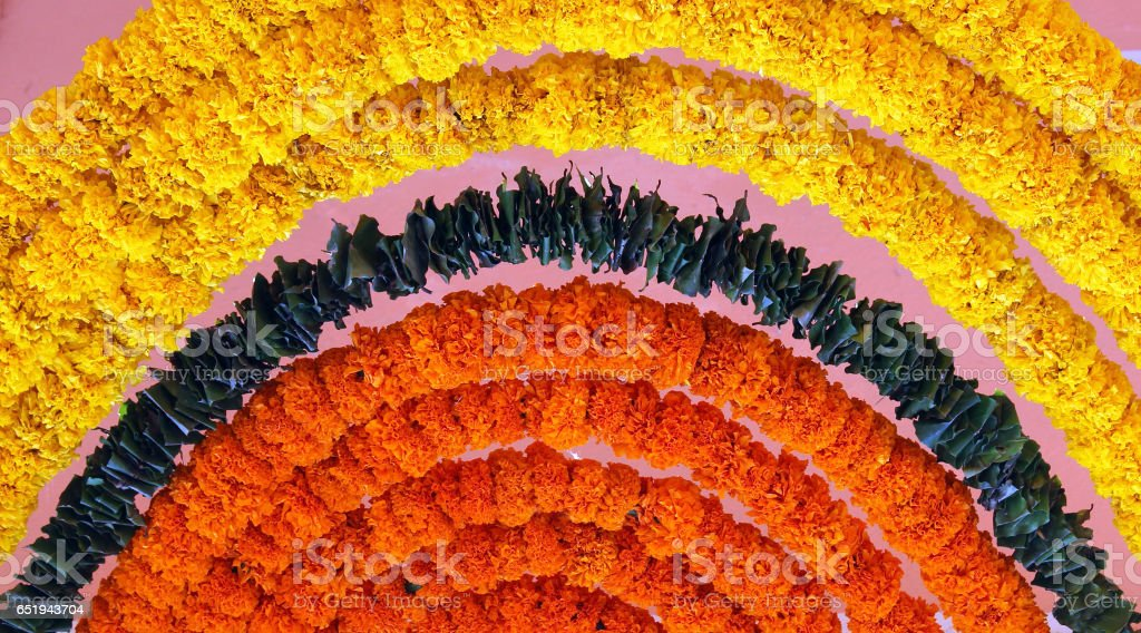 Indian festive decoration - a garland of orange and yellow Marigold (Tagetes) flowers stock photo