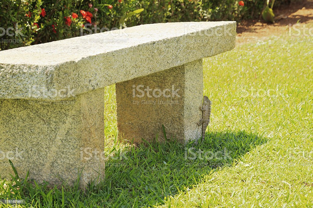 Indian garden lizard and the stone park bench stock photo
