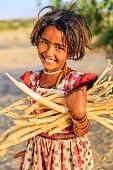 Indian little girl carrying brushwood, desert village, Rajasthan, India.