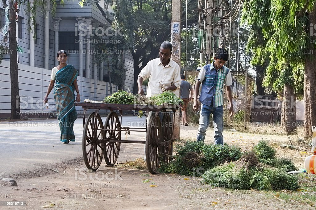 Indian man and boy selling vegetables beside road royalty-free stock photo