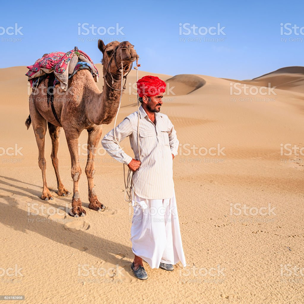 Indian man holding camel on sand dunes, Rajasthan, India stock photo