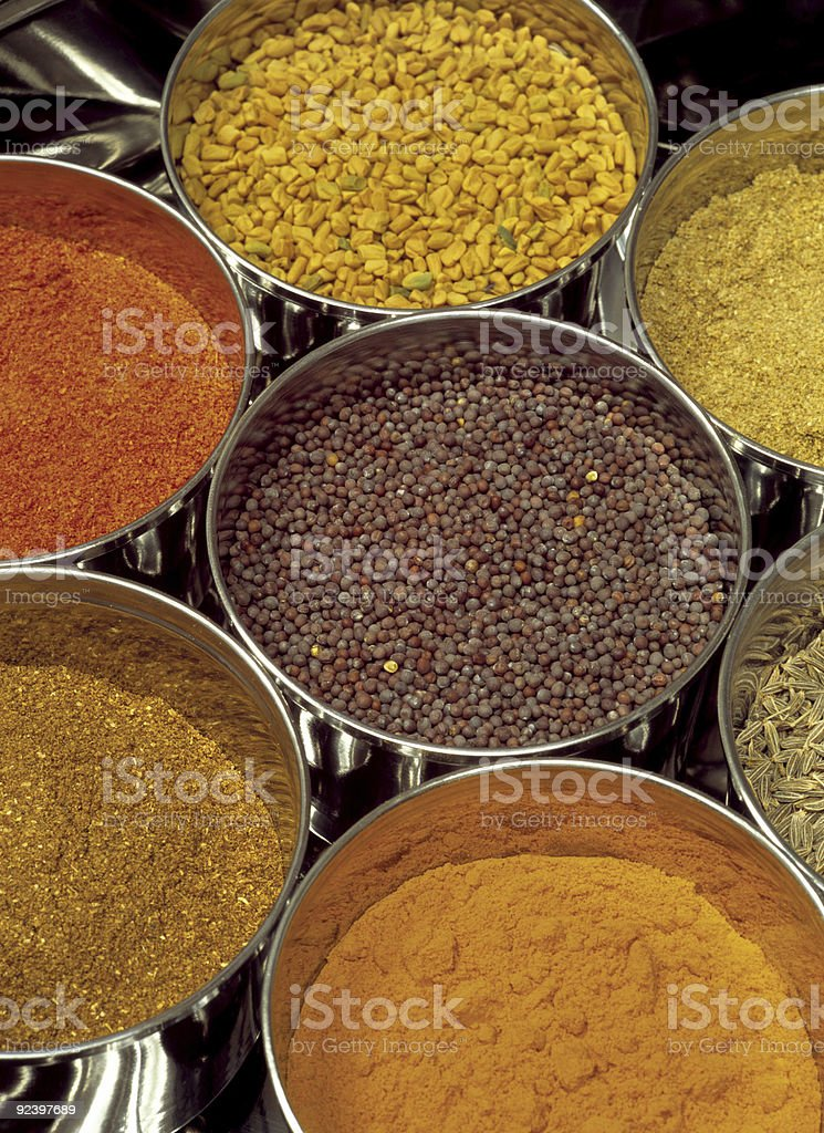 Indian Masala spices royalty-free stock photo