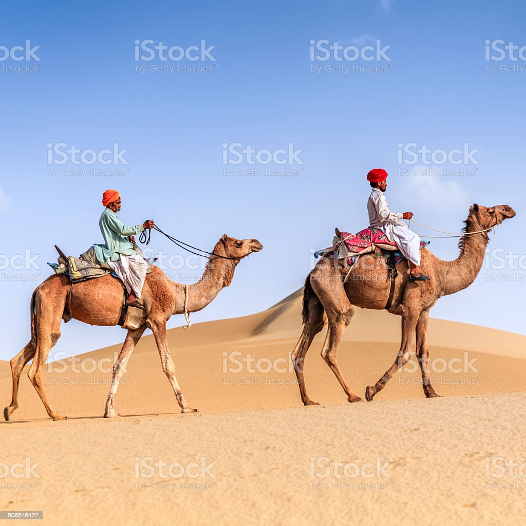 Indian men riding camels on sand dunes, Rajasthan, India stock photo