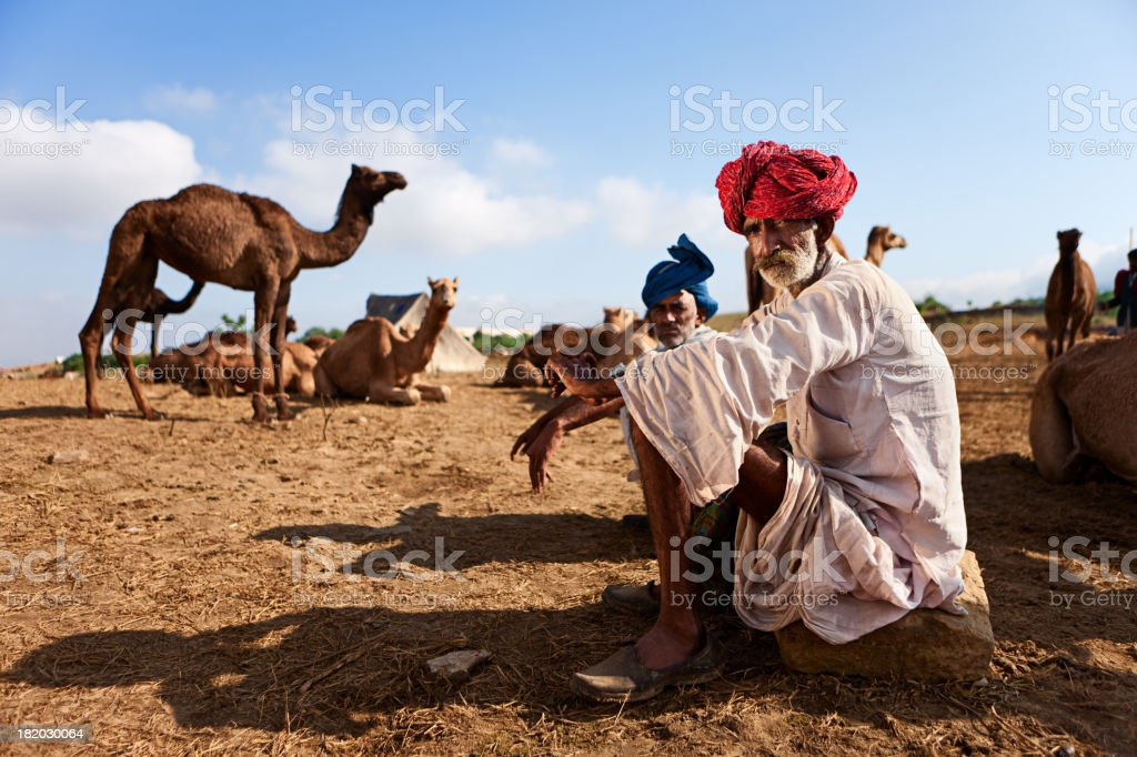 Indian men with camel during festival in Pushkar stock photo
